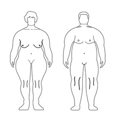 fat european women and man outline style human vector image