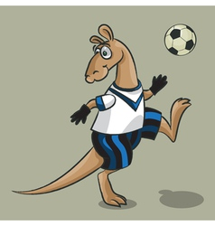 Kangaroo the football player vector