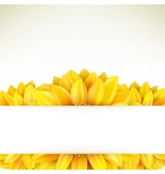 Sunflower on white background EPS 10 vector image