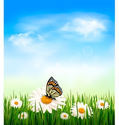 Nature background with grass and butterfly vector