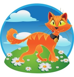 Pumpkin-orange halloween cat vector