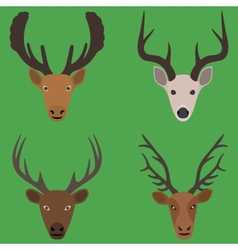 Collection of deer heads in a flat design vector image