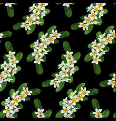 plumeria seamless pattern vector image vector image