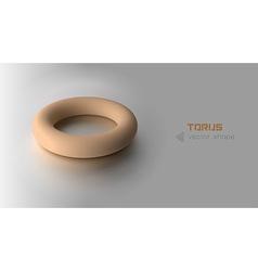 Torus orange vector