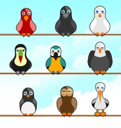 cartoon birds vector image