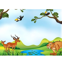 Animals and pond vector
