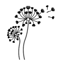 Black silhouette flying blow dandelion buds vector