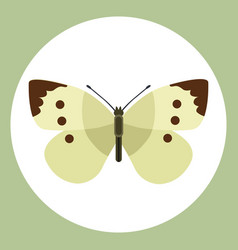 insect icon flat isolated nature flying butterfly vector image