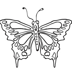 simple black and white butterfly vector image vector image