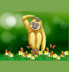 White gibbon sitting on grass vector