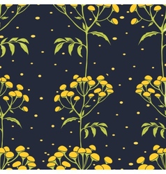 Tansy flowers pattern vector