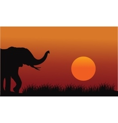 Beautiful elephant in hill scenery vector