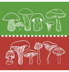 Poisonous toxic mushrooms table on white vector