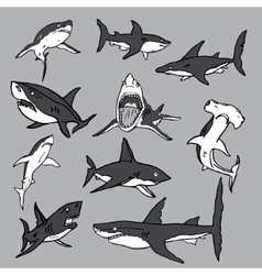 Set of sea sharks eps for t-shirts vector