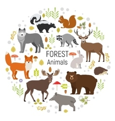 Circle set of plants and forest animals vector image