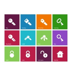 Key icons on color background vector