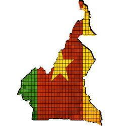 Cameroon map with flag inside vector