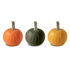 Pumkin three color vector