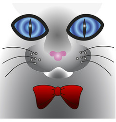 Abstract cat face with big eyes vector