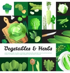 Organic green vegetables banners composition vector