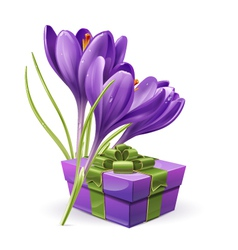 62sFlowers with a gift vector image