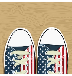 Usa shoes vector