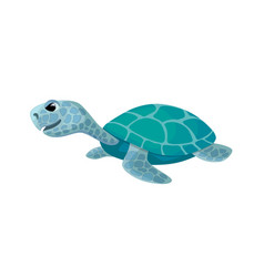 Cute turtle isolated cartoon image vector