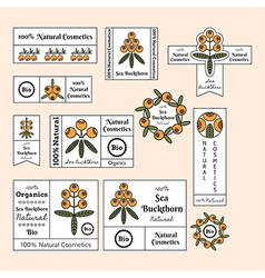 Set of sea buckthorn labels for cosmetic products vector image
