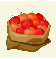 stylized sack with fresh ripe tomatoes vector image