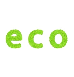 word eco with leaves on a white vector image vector image