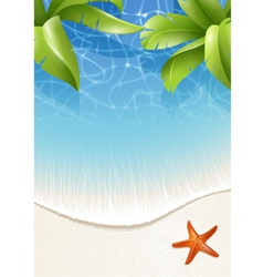 Palm leaves over water vector