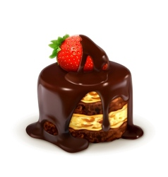 Cake with strawberry in chocolate detailed vector
