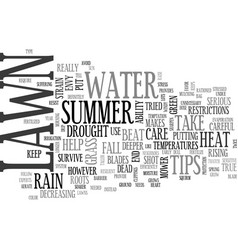 Beat the heat tips to help your lawn survive a vector