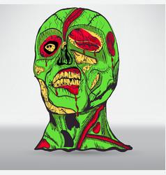 zombie head with brain vector image