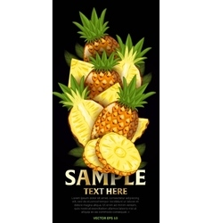 Fruit mix with leaves on black background vector