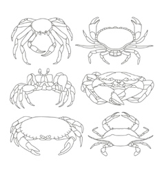 Set of crab icons vector