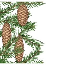 Seamless border with fir branches and cones vector image