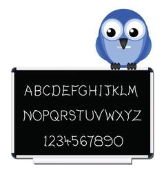 bird blackboard vector image
