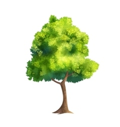 Color tree vector