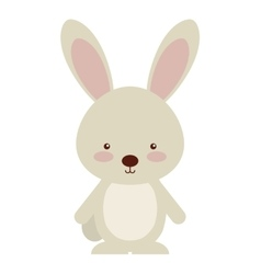 Woodland rabbit animal character cute icon vector