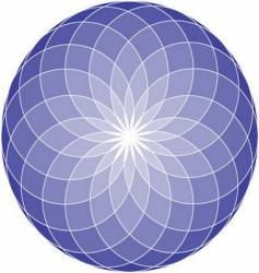 Seed of life mandala vector