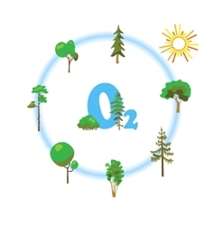 Cartoon image of photosynthesis trees vector image