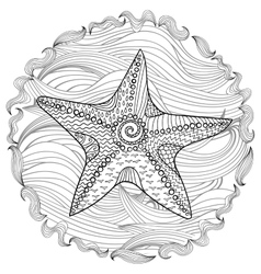Starfish with high details vector