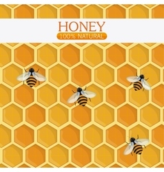 Honey healthy and organic food design vector image