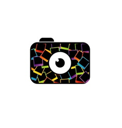 photography logo with polaroid vector image vector image
