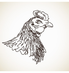 Sketch of hen vector