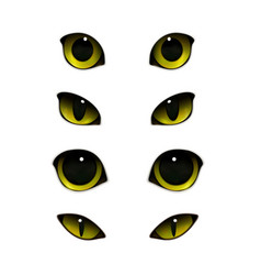 cats eyes realistic set vector image vector image