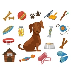 Pet dog icons vector image vector image