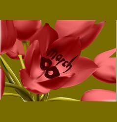 Tulip in 8 march vector