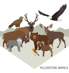 Yellowstone national park animals grizzly moose vector